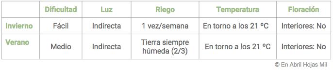 Pilea peperomioides cuidados tabla resumen En Abril Hojas Mil