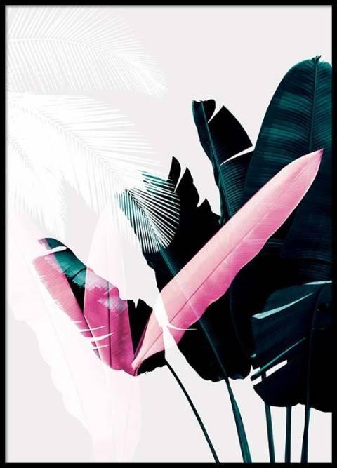Regalo Ilustración de plantas en tres colores
