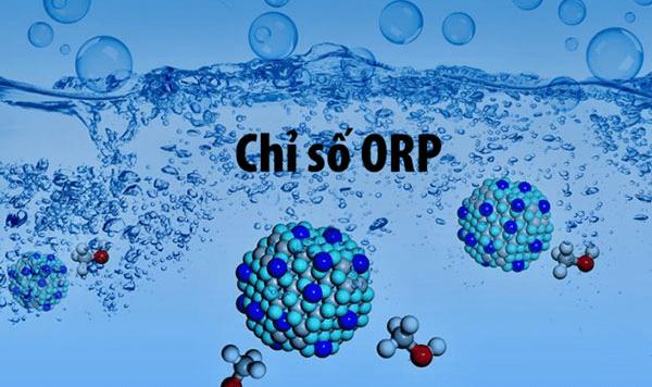 Chỉ số chống oxy hóa mang ý nghĩa đặc biệt tới sức khỏe và chống lão hóa của cơ thể