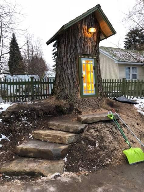 Δέντρο 110 χρόνων μεταμορφώθηκε σε μια εντυπωσιακή βιβλιοθήκη! (φωτογραφίες)