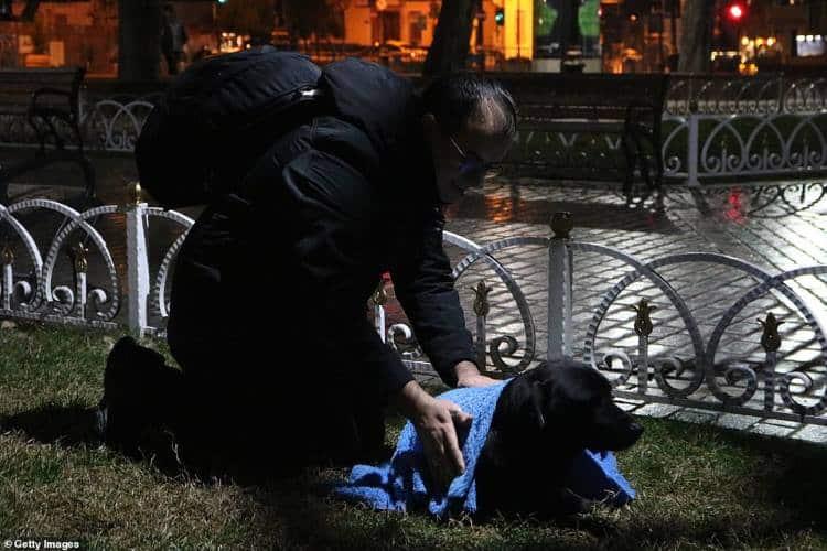 Κωνσταντινούπολη: Οδοντίατρος σκεπάζει κάθε βράδυ αδέσποτες γάτες και σκύλους για να μην κρυώνουν!