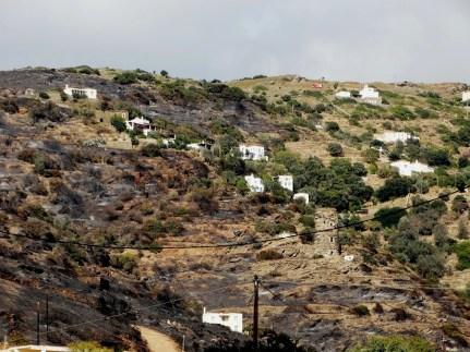 Η περιοχή από όπου ξεκίνησε η φωτιά στον Άνω Άγιο Πέτρο (φωτ. Εν Άνδρω).