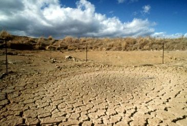 Water scarcity – an annual struggle going forward.