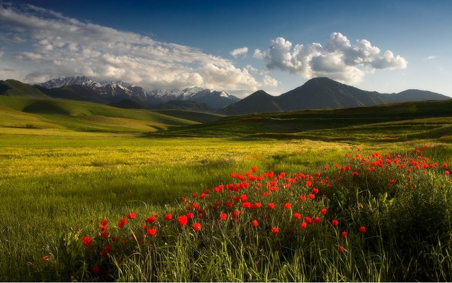 50+ Collection of Breathtaking Landscape Photography 6