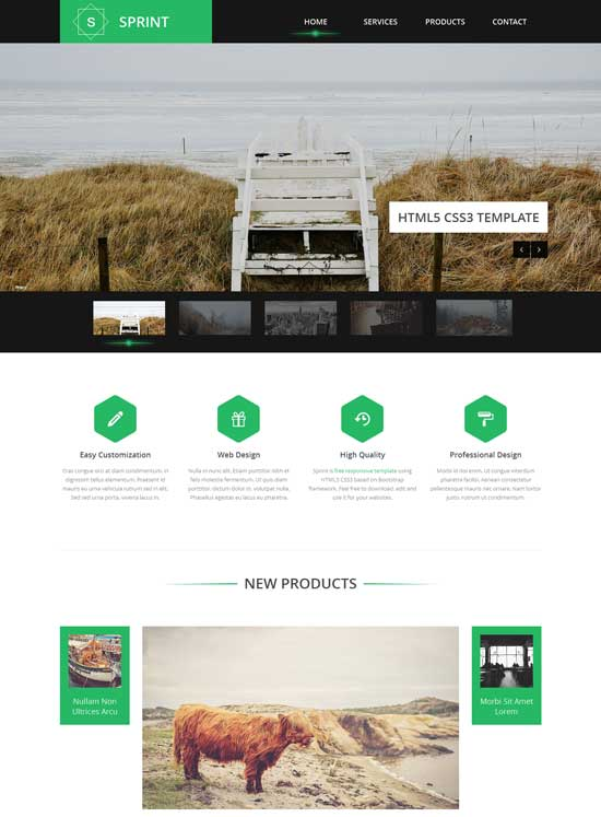 Sprint-Free-Responsive-website-template