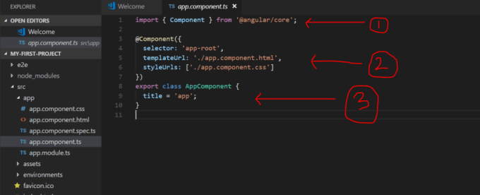 Sections Of Angular Components