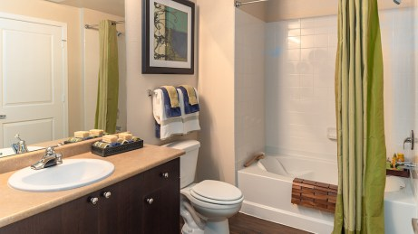 Full Bath with shower tub combo
