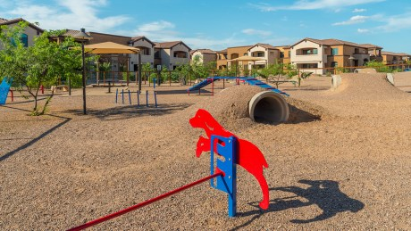 Tucson National Dog Ranch 1