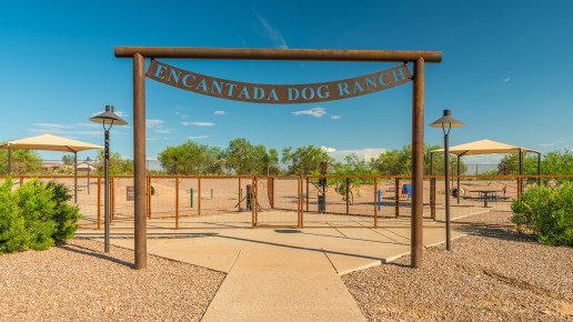 Tucson National Dog Ranch 6