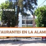 Restaurantes en la Alameda Celaya