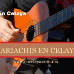 Mariachis en Celaya