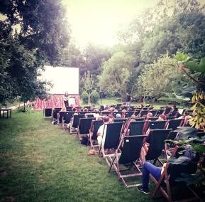 Enchanted Cinema Summer Screenings 2017 - Grease at The Orchard Tea Gardens (4)
