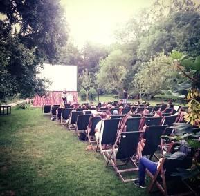 Enchanted Cinema Summer Screenings 2017 - Grease at The Orchard Tea Gardens (4)