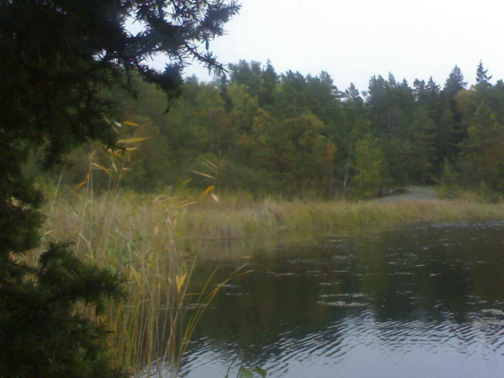 Ingmarso lake