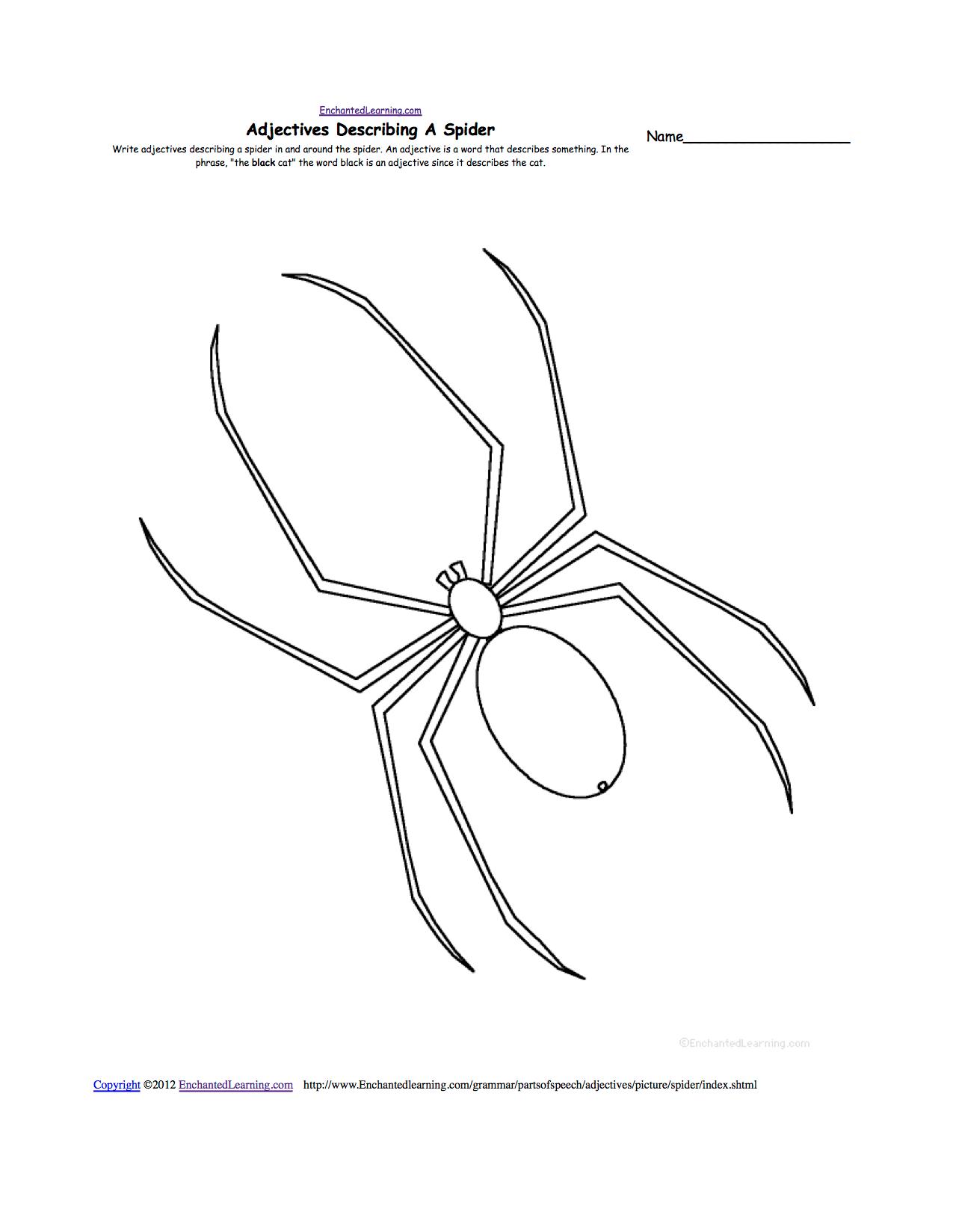 Spiders At Enchantedlearning