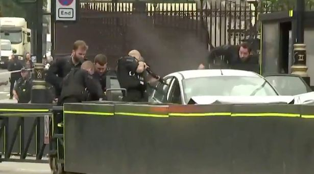 Terror Hoax