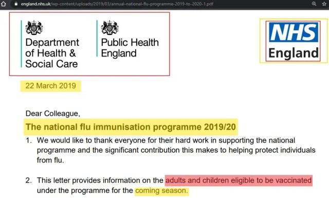 Flu Jab 2019 PHE PDF