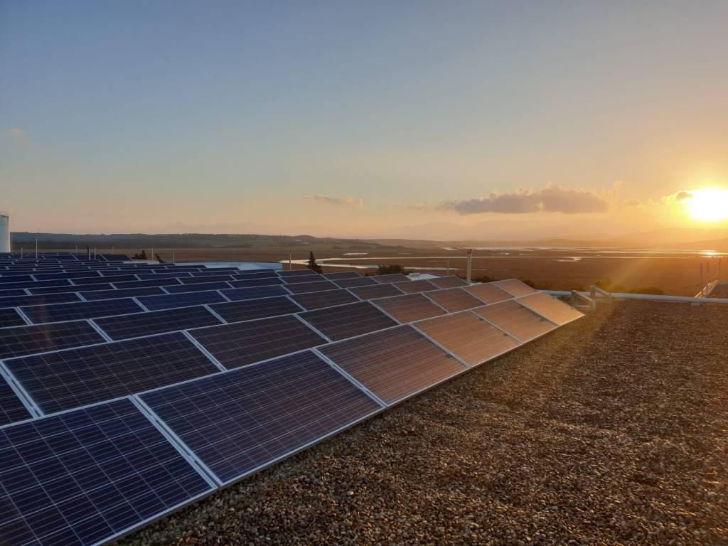 Instalación de autoconsumo fotovoltaico para  la empresa conservera de pescado, Salazones Herpac.