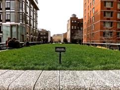 23th St. lawn.