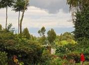 . . . you can see Lake Kivu.