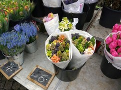 This stall had the prettiest colored cut Hyacinths, Muscaris, and tulips.