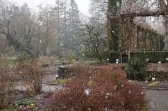 Hohenheim Botanical Garden, March 2016, Stuttgart, by enclos*ure