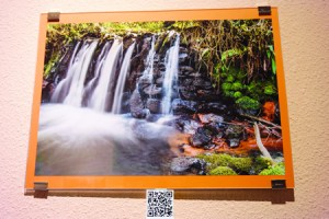 Unha das imaxes tomadas por José Camilo López, que amosa o seu código QR para localizala.  EC..