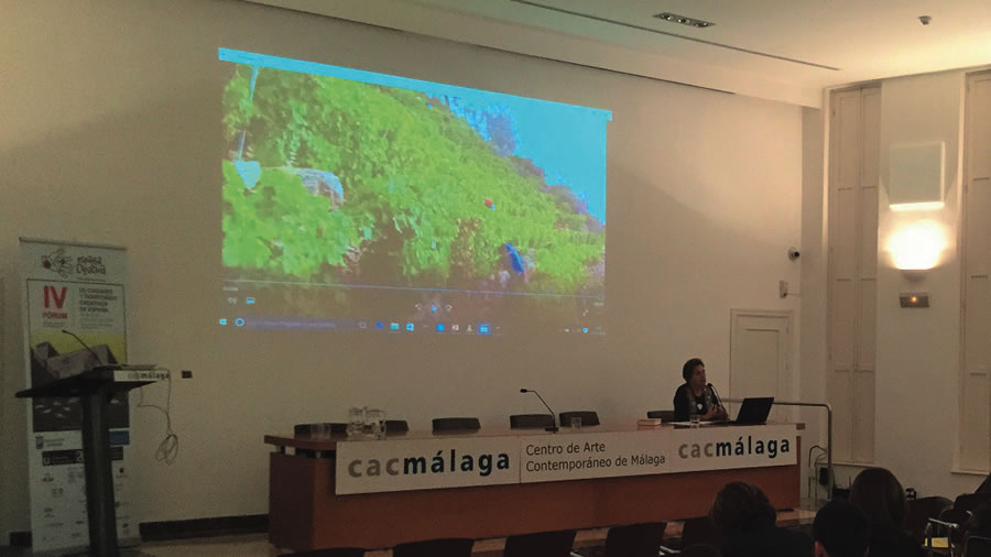 O proxecto do Consorcio de Turismo Ribeira Sacra foi recoñecido no IV Forum de Cidades e Territorios Creativos de España, celebrado en Málaga a mediados de novembro. (Foto cedida).