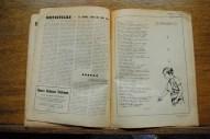 Páginas interiores II N°330