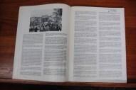 Páginas interiores I N°391
