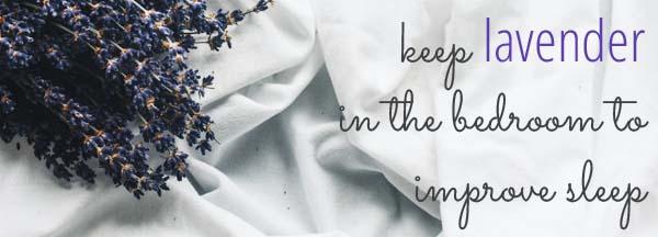 Keep lavender in the bedroom to improve sleep