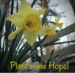 Plant some Hope - 5 Autumn Dates to Stay Connected to your spouse