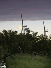 La luna tras el parque eólico