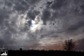 La luna se colaba a veces entre las nubes