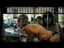 'Fauna humana' (2008).