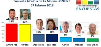 Encuesta Online Alcaldía de La Molina – 07 Febrero 2018