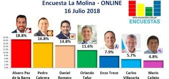 Encuesta La Molina, Online – 16 Julio 2018