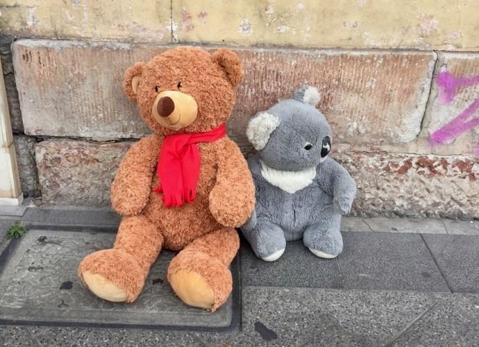 Teddy bear and koala bear