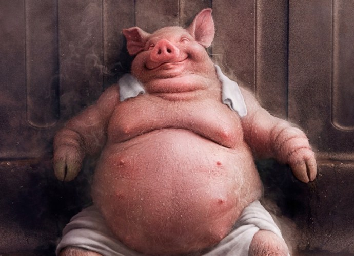 Midea Fatty Pig