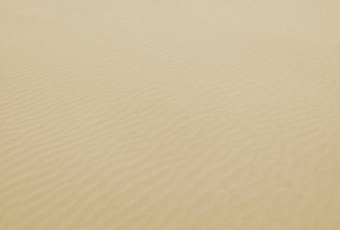 Rippled Sand Surface