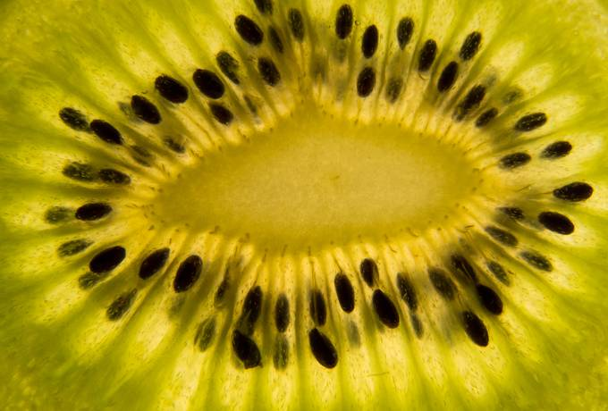Kiwi Slice Macro