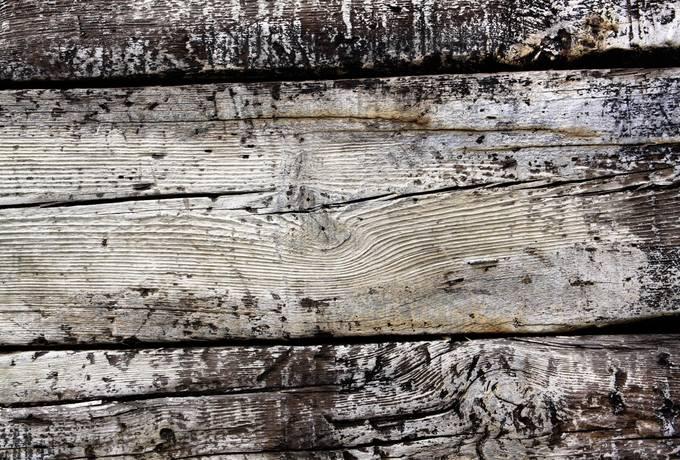 wood grunge paint