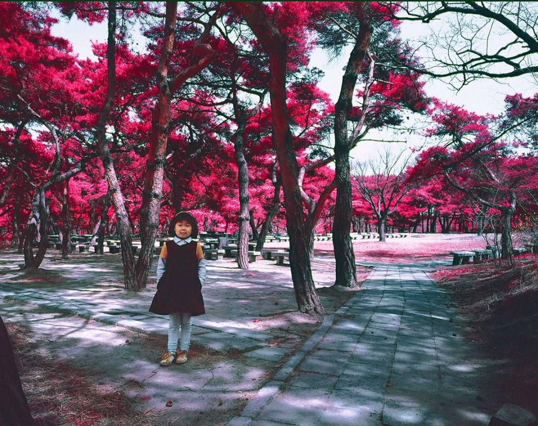 North Korea Infrared Photography by Karim Sahai