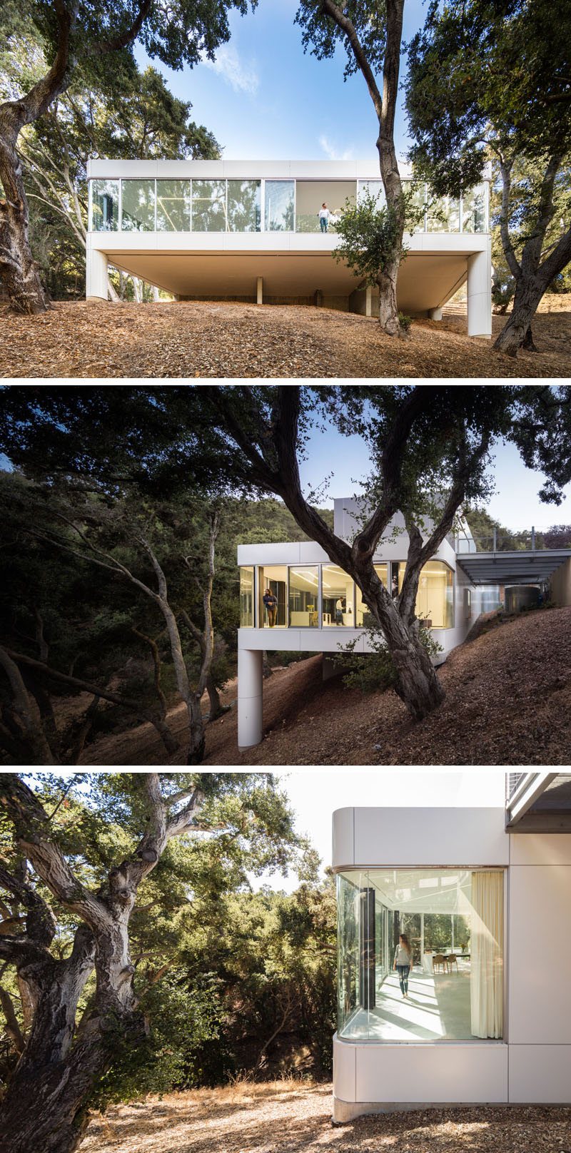 Craig Steely Architecture have designed a modern house inCupertino, California, that faces a canopy of a dense oak grove in the foothills of the Santa Cruz Mountains. #ModernArchitecture #ModernHouse