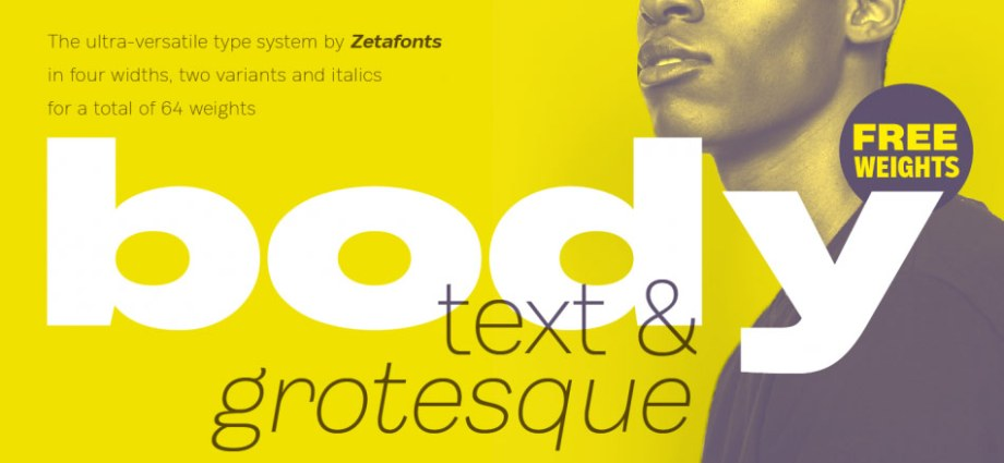 Body Font Family from Zetafonts