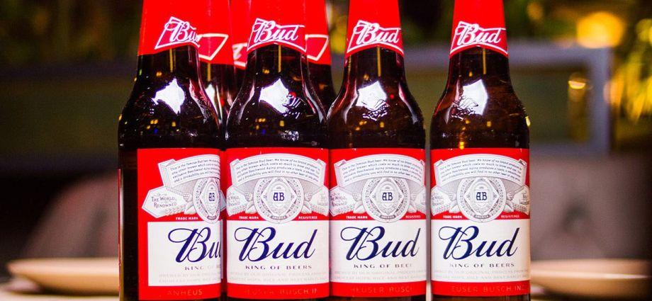 Budweiser beers on table