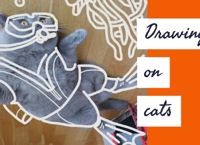 Rebecca Ashdown - Drawing on Cats