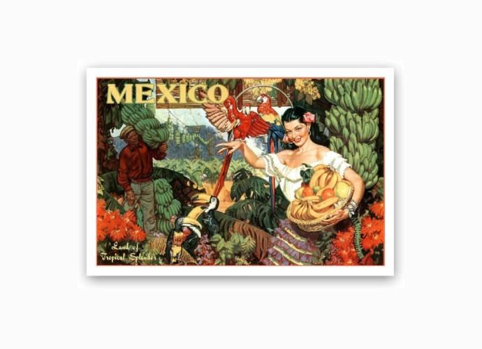 Vintage Mexico Postcards