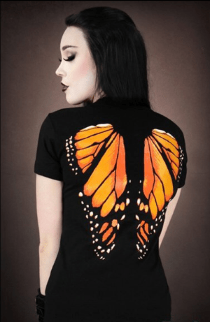 monarch-butterfly-by-euflonica-on-deviantart