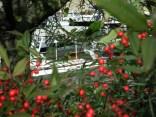 Port de l'Arsenal gardens 10